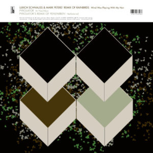 Wind Was Playing With My Hair – Ulrich Schnauss & Mark Peters remix