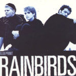 Rainbirds_Blueprint